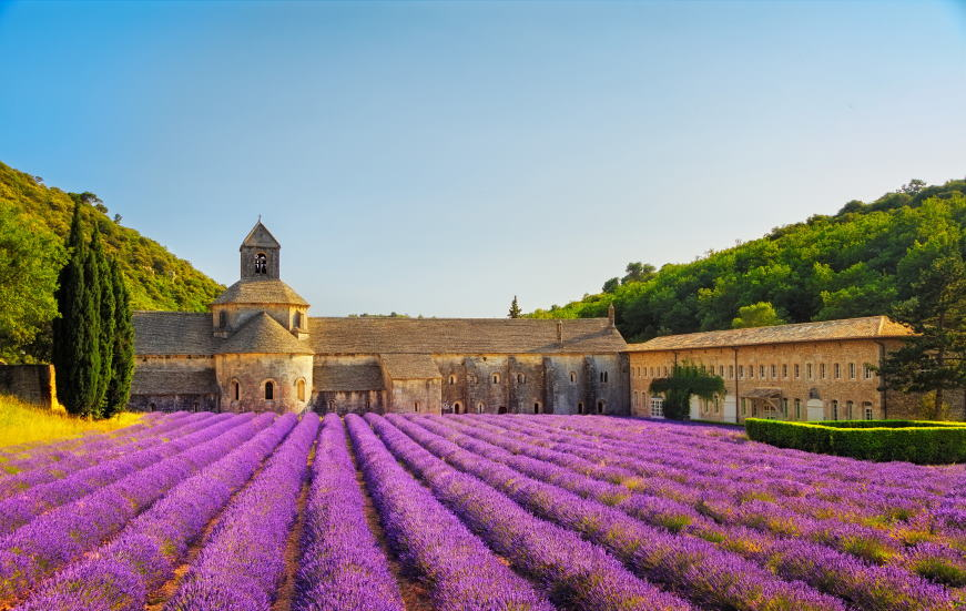 Four beautiful authentic sites in France Abbey of Senanque and blooming rows lavender 296156339